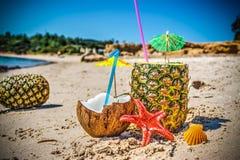 Ananas, kokosnoten en zeester op het zand stock foto