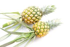 Ananas lokalisiert auf Weiß Stockfotos