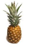 Ananas lokalisiert auf weißem Hintergrund Lizenzfreies Stockfoto