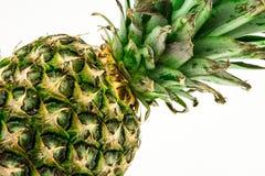 Ananas lokalisiert auf weißem Hintergrund Der rote Samen ist der Inhalt Lizenzfreie Stockbilder