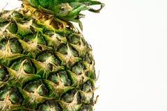 Ananas lokalisiert auf weißem Hintergrund Der rote Samen ist der Inhalt Lizenzfreie Stockfotografie