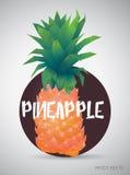 Ananas lumineux de couleur Illustration de vecteur Images libres de droits
