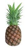ananas mûr Photographie stock