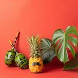 Ananas mûr avec de grandes feuilles de maracas noirs de moustache de fond lumineux rouge de monstera Le concept d'une partie musi images stock