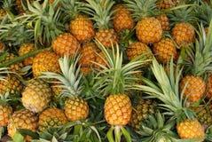 Ananas, Markt Stockfotos
