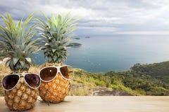 ananas med solglasögon med den nya gränsmärket för Phahindum synvinkel Royaltyfri Fotografi