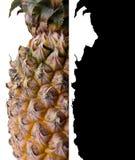 Ananas med urklippbanan royaltyfri bild