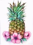 Ananas met bloemen stock foto