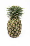 Ananas met plakken op witte achtergrond Stock Foto