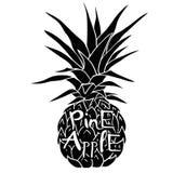 Ananas mit den Gläsern tropisch, Vektor, Illustration, Design, exotisch, Lebensmittel, Frucht lizenzfreie abbildung