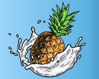 Ananas mjölkar färg vektor illustrationer