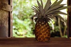 Ananas na drewnianym stole w kraj kuchni na tle ogrodowy kraj Fotografia Stock