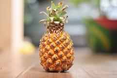 Ananas na płytkach Zdjęcia Royalty Free