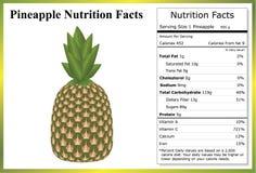 Ananas-Nahrungs-Tatsachen lizenzfreies stockfoto