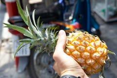 Ananas nella mano immagine stock