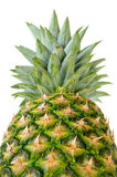 Ananas nella prospettiva Fotografie Stock