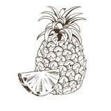 Ananas nello stile d'annata Fotografia Stock Libera da Diritti