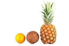 Ananas, noix de coco et orange Images libres de droits