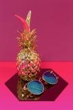 Ananas och exponeringsglas royaltyfri fotografi