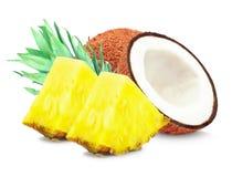 Ananas och kokosnöt Royaltyfri Fotografi