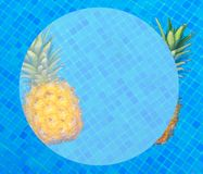 Ananas och pöl vektor illustrationer