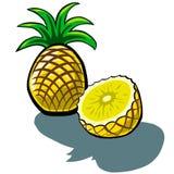 Ananas och skiva Royaltyfri Foto