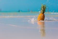 Ananas op het strand royalty-vrije stock afbeelding