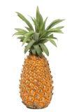 Ananas op witte achtergrond stock afbeeldingen