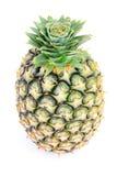 Ananas op witte achtergrond Stock Fotografie
