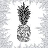 Ananas op witte achtergrond wordt geïsoleerd die Vector illustratie Stock Foto's