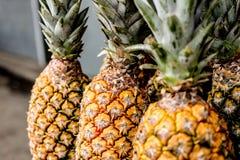 ananas organici freschi immagine stock
