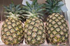 Ananas på en hylla royaltyfri bild