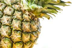 Ananas på vit Arkivfoton