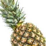 Ananas på vit Royaltyfri Bild
