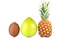 Ananas, pamplemousse et noix de coco Images libres de droits