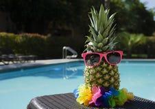 Ananas par la piscine images stock