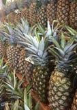 Ananas per i giorni Fotografia Stock