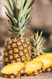 Ananas. This is a pineapple Royalty Free Stock Photos