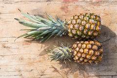 Ananas. This is a pineapple Royalty Free Stock Images