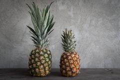 Ananas. This is a pineapple Royalty Free Stock Photography