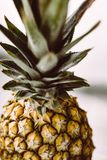Ananas, Pineapple, Plant, Fruit Royalty Free Stock Photo