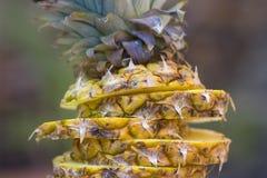 ananas pokrajać Zdjęcia Stock