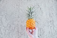Ananas przeciw ścianie w mężczyzna ` s rękach, mały dziecko ananas zdjęcie royalty free