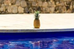 Ananas przy poolside fotografia royalty free