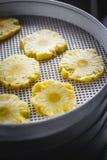 Ananas rond coupé en tranches dans un dessiccateur de déshydrateur, plan rapproché Vue de ci-avant photos stock