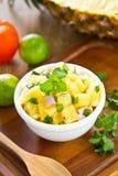 Ananas-Salsa Lizenzfreie Stockfotografie