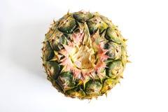 Ananas schnitt Nahaufnahmefotoisolat auf weißem Hintergrund Lizenzfreies Stockbild