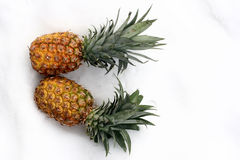 Ananas on snow Royalty Free Stock Photos