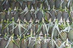 Ananas som är klar att sälja på Phatthalung Thailand royaltyfria bilder