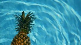 Ananas som svävar i blått vatten i simbassäng Sund rå organisk mat saftig frukt exotiskt tropiskt för bakgrund lager videofilmer